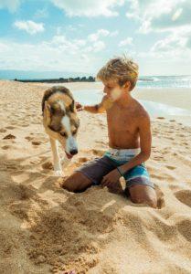 мальчик и хаски на песке